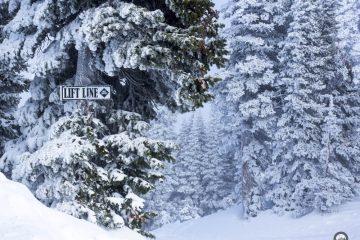 LiftLine trail marker. image: LocalFreshies.com