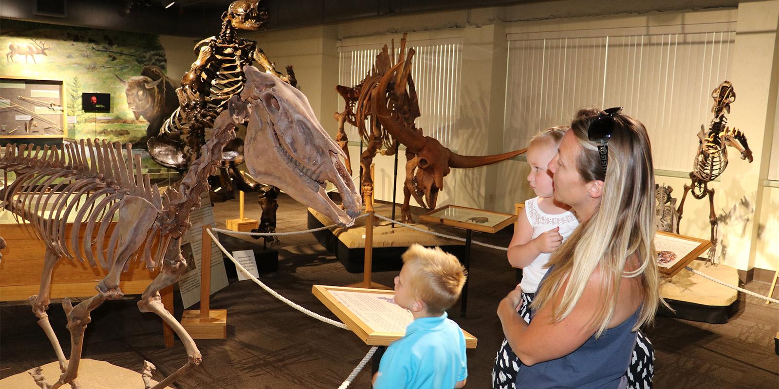 image: family looking at dinosuar bones
