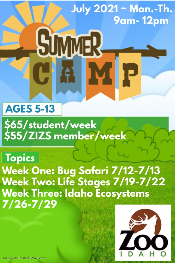 Zoo Summer Camps