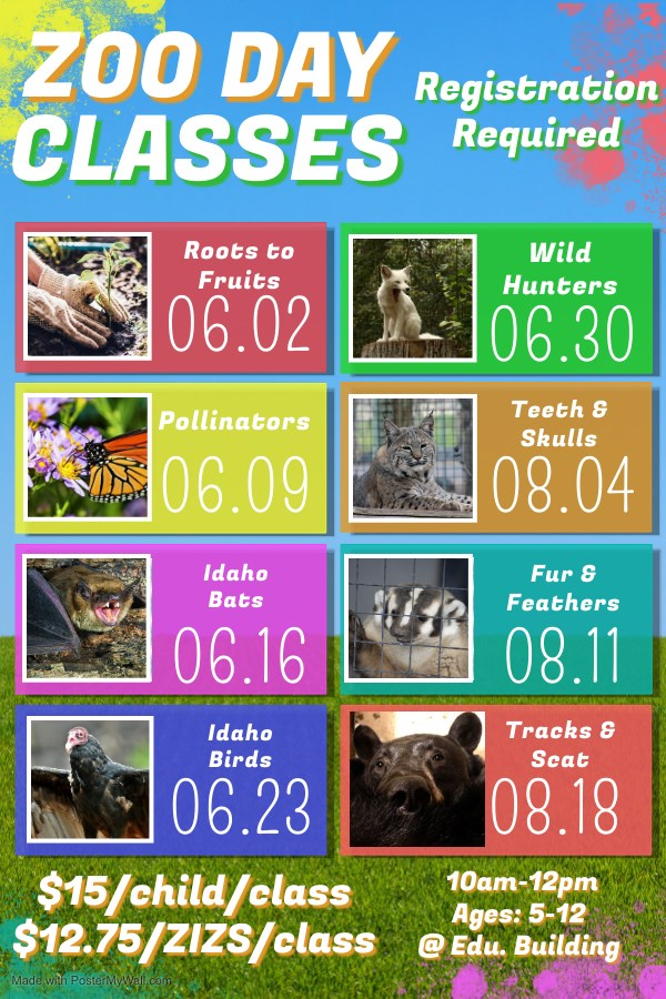 Zoo Day Classes