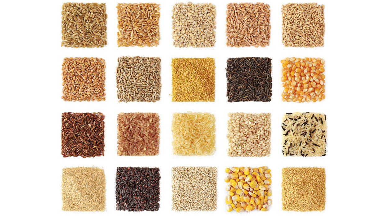 Corn vs. Rye